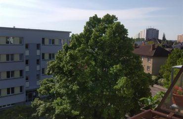 Byt 2+kk po rekonstrukci, Hradec Králové, nájem, PRONAJATO